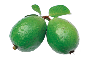 guava health benefits