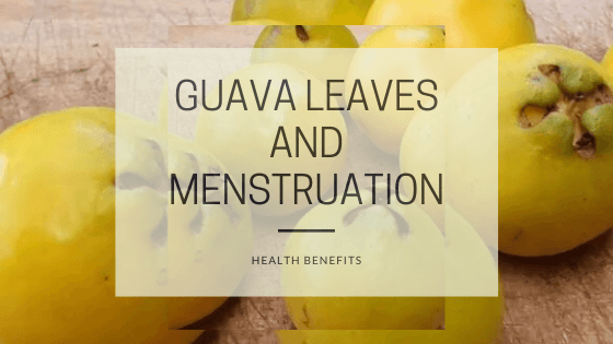 guava leaves and menstruation (2)