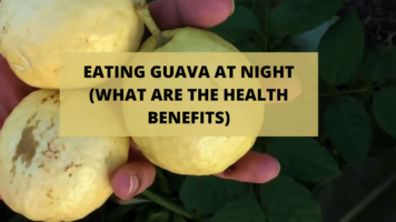 EATING GUAVA AT NIGHT (WHAT ARE THE HEALTH BENEFITS) (1)