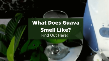 What Does Guava tea smell Like_ (1)